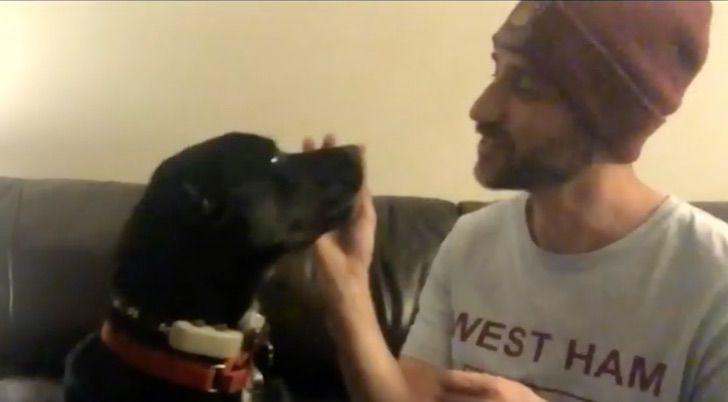 Captura de Pantalla 2020 12 02 a las 16.14.59 - Encuentran perro que pasó 6 semanas extraviado en una obra de construcción. Se escondió por miedo