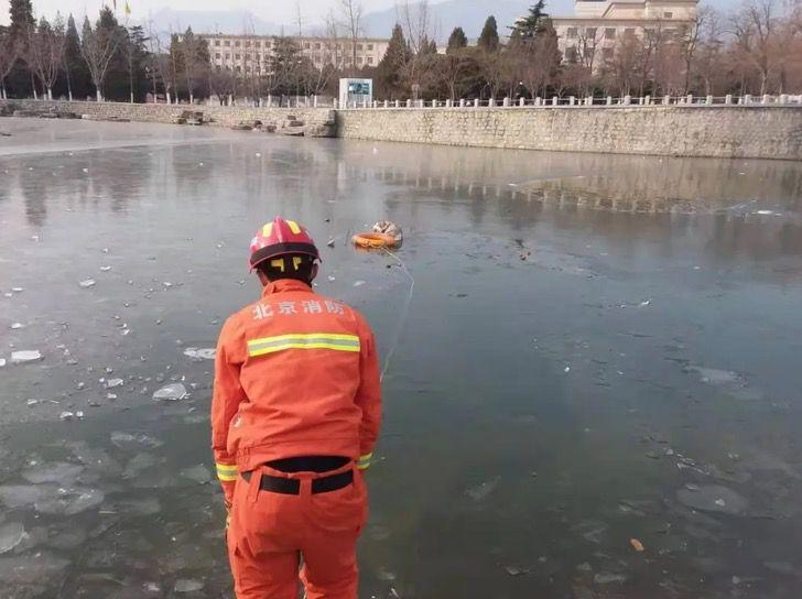 Captura de Pantalla 2020 12 29 a las 13.36.07 - Husky cayó en un lago congelado y aullaba por ayuda. Bomberos lo rescataron con un salvavidas