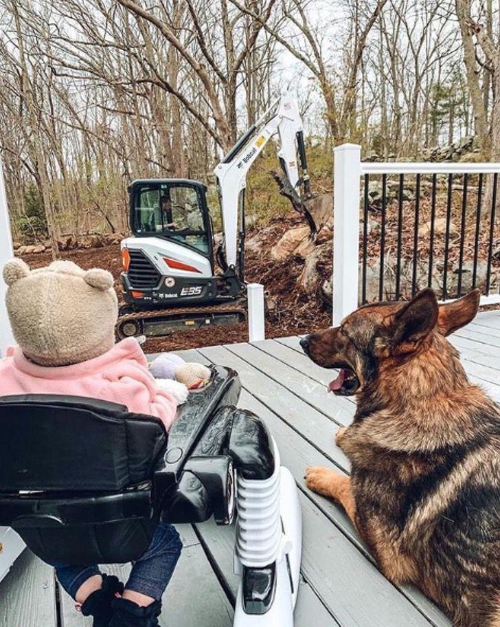 Captura de Pantalla 2021 01 28 a las 11.41.58 - Perro policía ama estar junto a la bebé de la familia. Es un guardián dentro y fuera de la casa