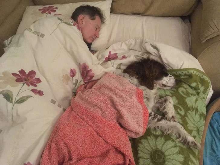 scale 2021 01 05T150358.498 - Amo duerme en el sofá para acompañar a su perro anciano. Es tan viejito que ya no sube las escaleras