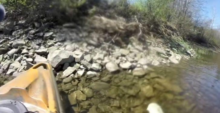 Captura de Pantalla 2021 06 07 a las 17.51.01 - Pescador salvó a una ardilla que era atacada por peces en un río. La subió a su bote con un remo