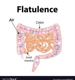 flatulence gases in small intestine the vector image [ 959 x 1080 Pixel ]