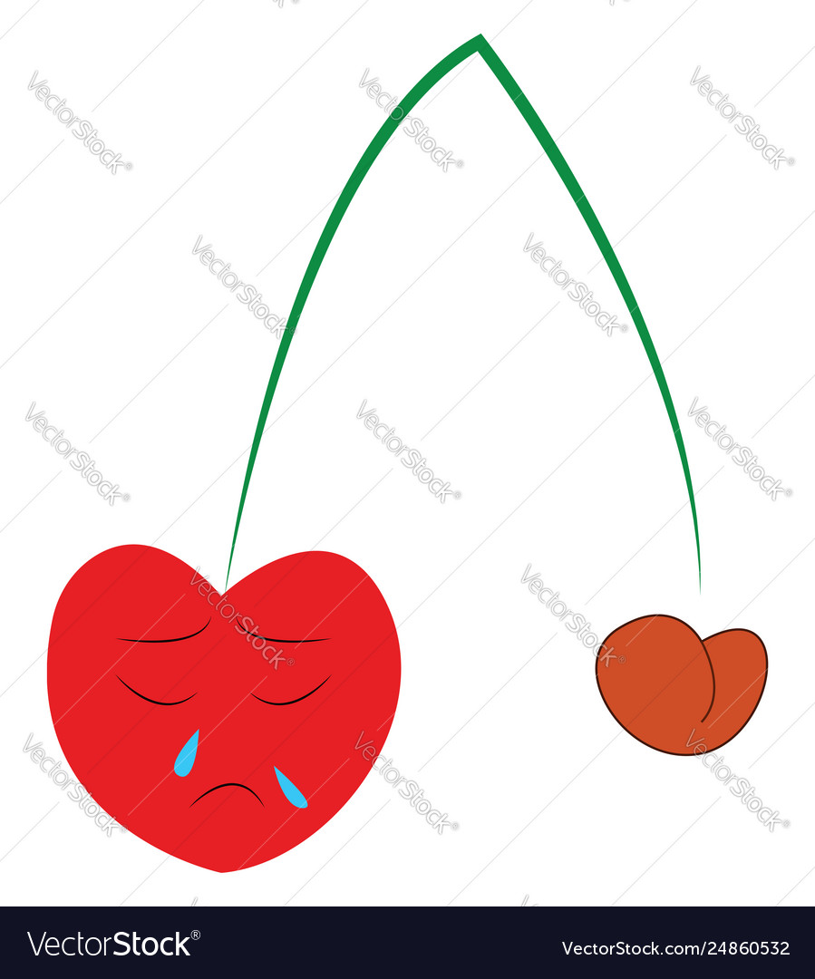 hight resolution of diagram of the cherry