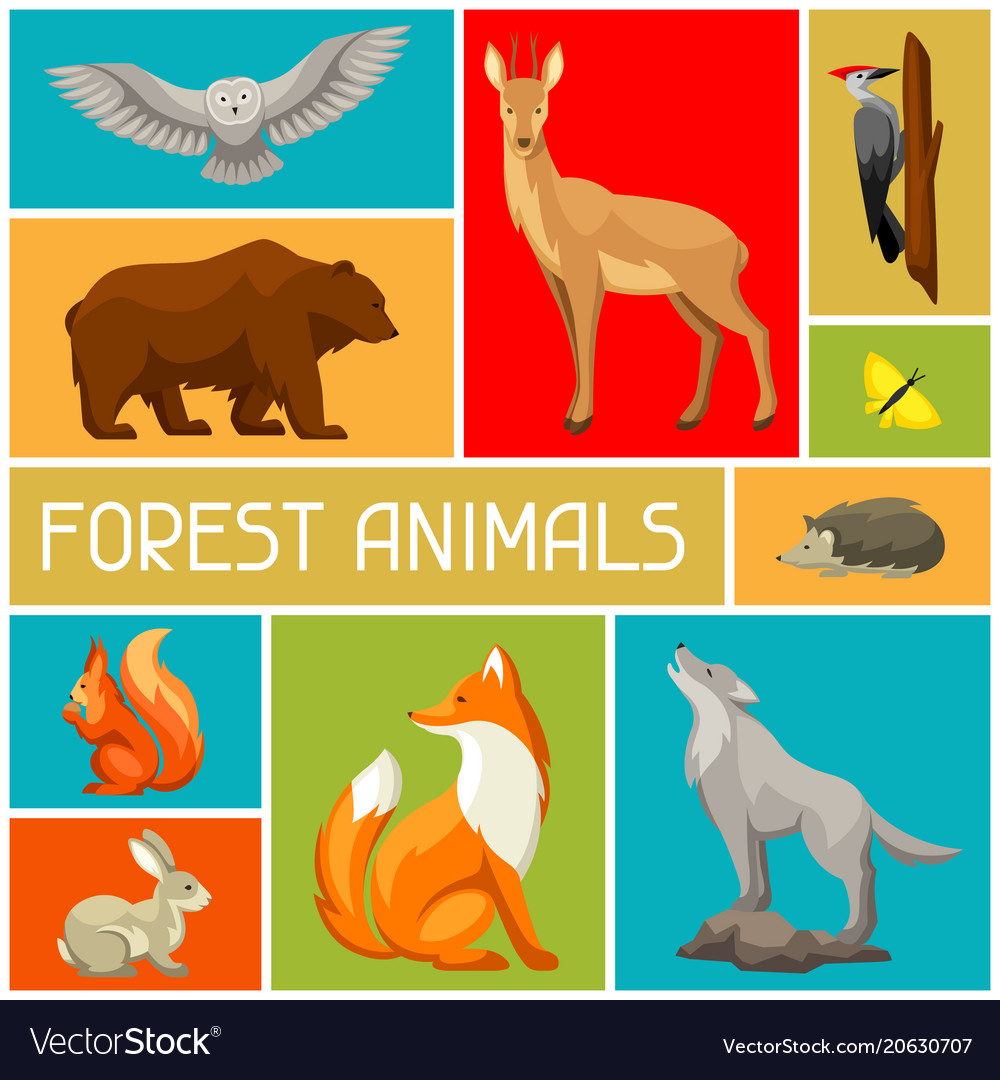 Come and meet our wide range of mammals and birds at the new forest wildlife park in ashurst, nr. Background With Woodland Forest Animals And Birds Vector Image