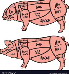 pig diagram meat [ 963 x 1080 Pixel ]