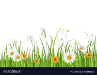 Green nature border with grass and flower Vector Image