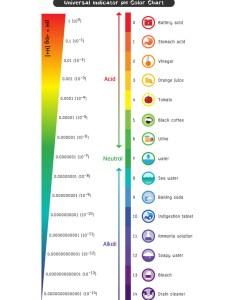also ph scale universal indicator color chart vector image rh vectorstock
