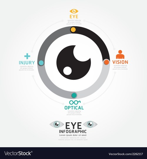 small resolution of diagram of eye