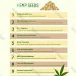 10 Health Benefits Hemp Seeds Infographic Vector Image