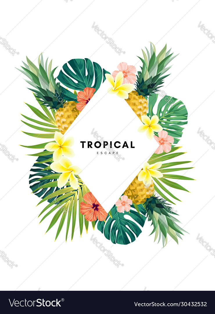 Summer Tropical Background : summer, tropical, background, Green, Summer, Tropical, Background, Exotic, Vector, Image