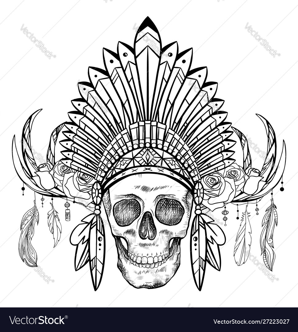 Black And White Drawing A Human Skull In A Vector Image