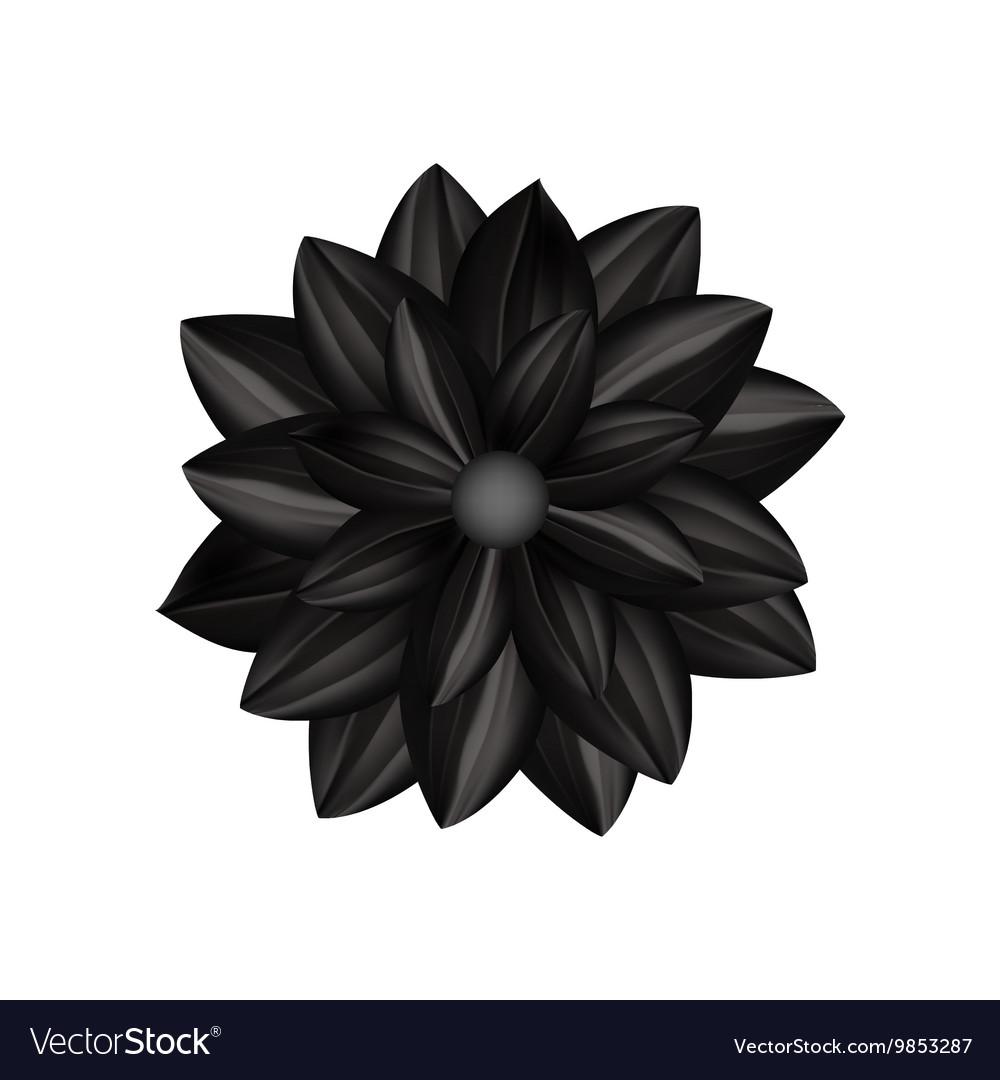 black flower in gothic