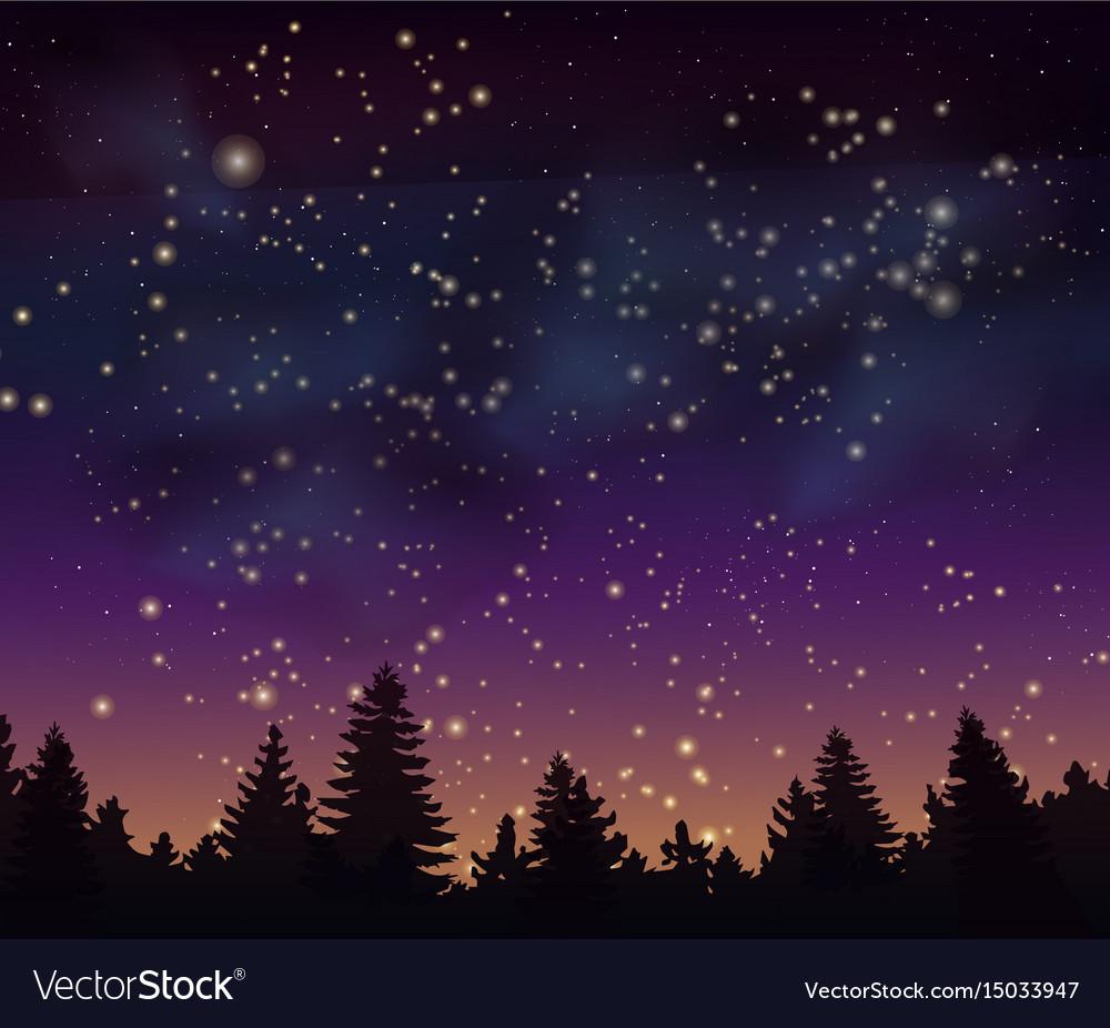 night forest under mystical