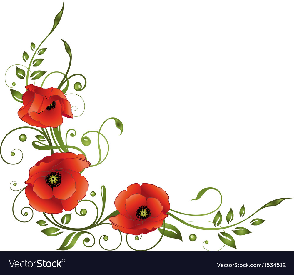 poppies floral element border