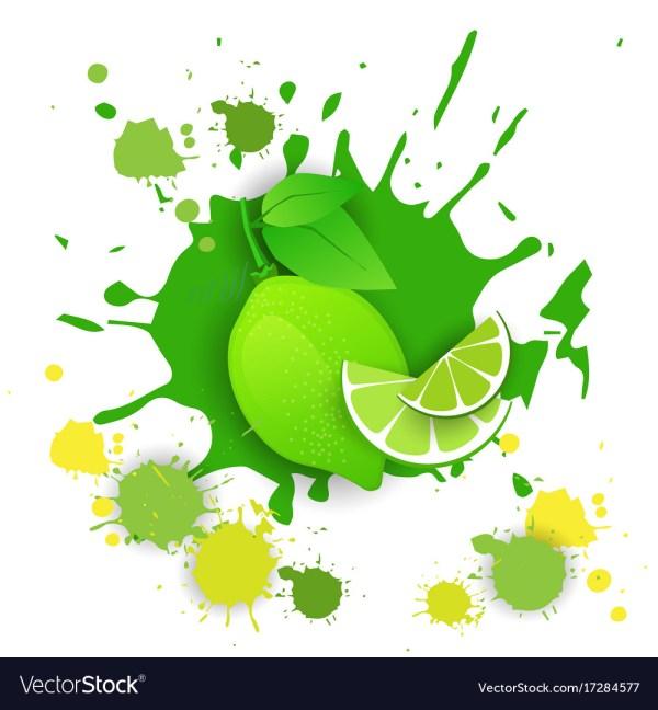 Lime Fruit Logo Watercolor Splash Design Fresh Vector