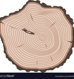 tree slices isolated vector image [ 1000 x 986 Pixel ]