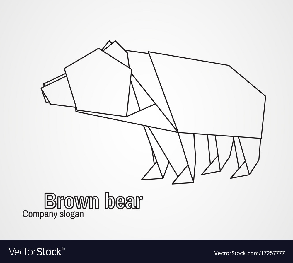 hight resolution of brown bear diagram