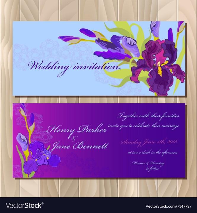 Purple Iris Flower Vector Image