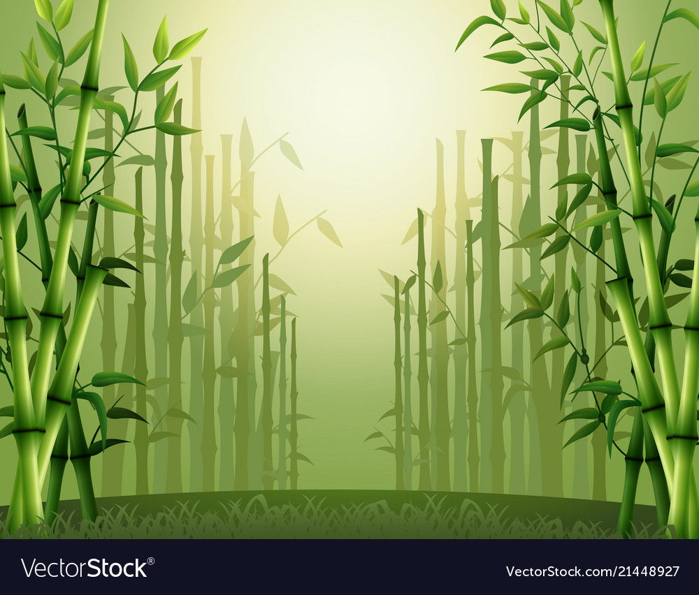 green bamboo trees background