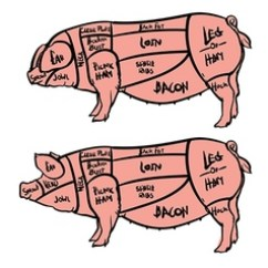 Pig Cuts Diagram Periodic Elements Meat Parts Wiring All Data Pork And Beef Butchery Set Vector Image Slide Cut Of
