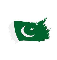 pakistan flag vector images