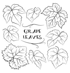 Grapes Outline Vector Images over 6 000