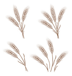 wheat sheaves vector images