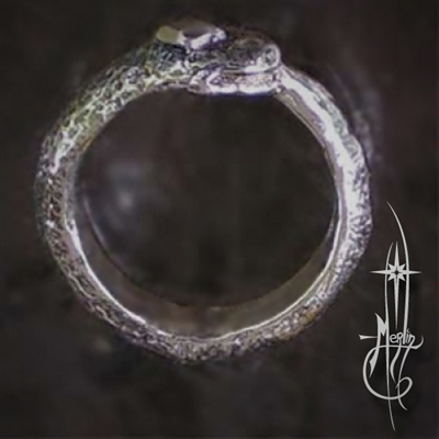 The Ouroboros Ring
