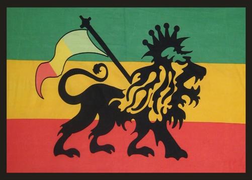 Rasta Lion Flag College Dorm Room Wall Tapestry Decor Essentials