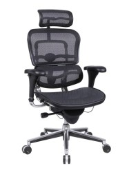 ME7ERG_Mesh Eurotech Ergo Mesh Ergonomic Chair w/ Headrest ...