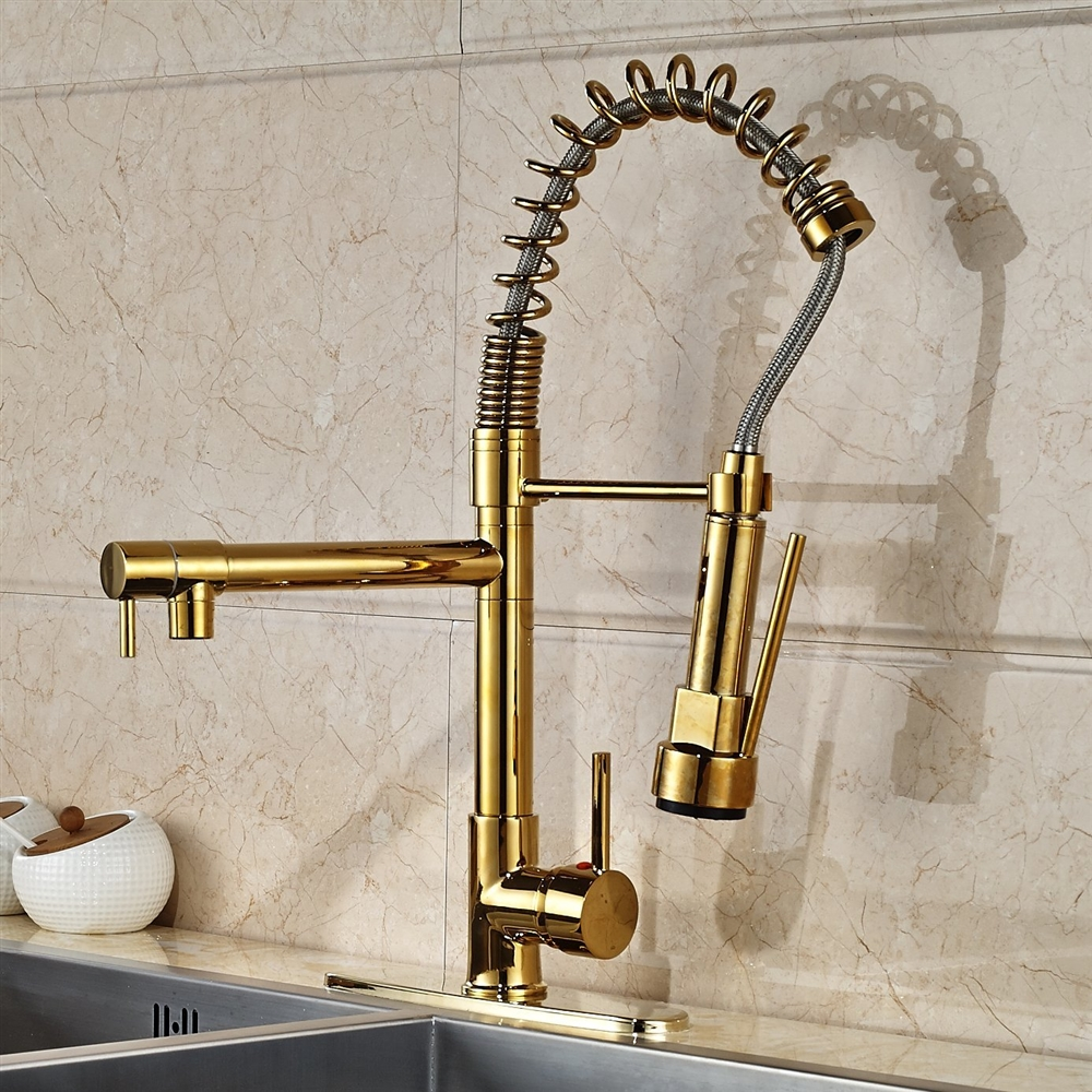 kitchen sink faucet ikea shaker cabinets venezuela gold finish with pull down any modern would greatly benefit from a sophisticated like our model the gives it an elegant look
