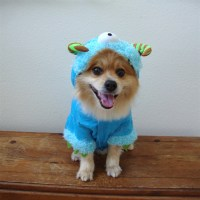 Monster Paws Dog Costume Blue