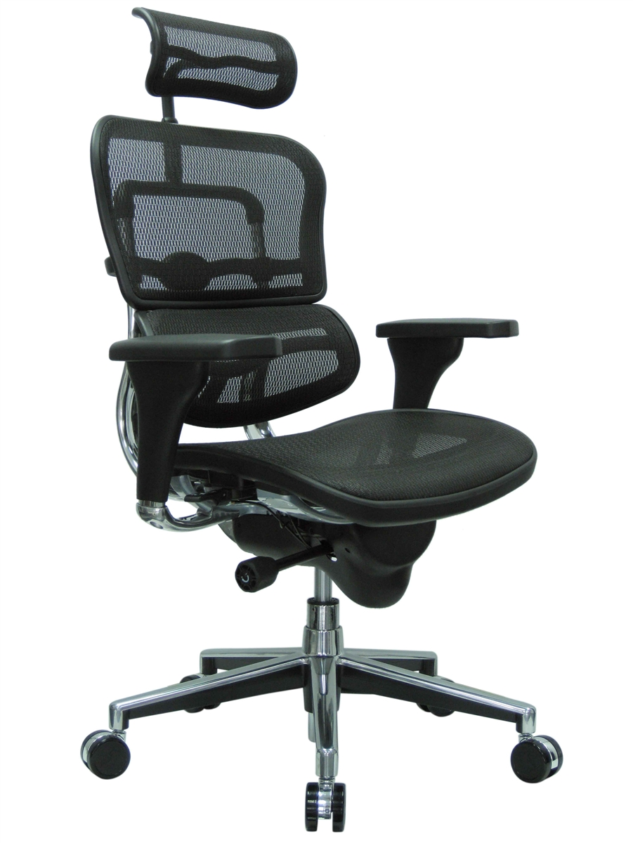 Eurotech ME7ERG Mesh Office Chair with Headrest by Raynor