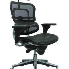 Executive Mesh Office Chair Beach Chairs Costco Eurotech Me7erg With Headrest By Raynor On The Alternative Views