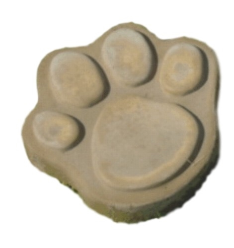 small dog cat paw