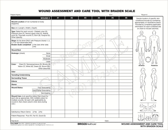 wound assessment diagram 2003 honda crv exhaust system briggs healthcare 3466p and care tool with braden
