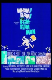 Image result for movie the flim-flam man