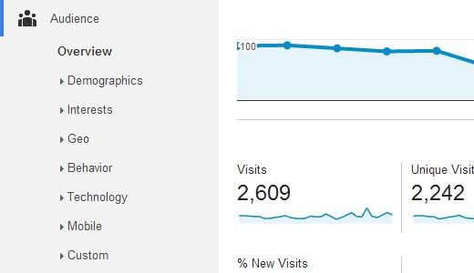 Google Analytics Audiență