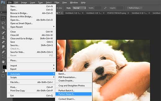 Mở một hình ảnh trong Perfect Resize từ Adobe Photoshop