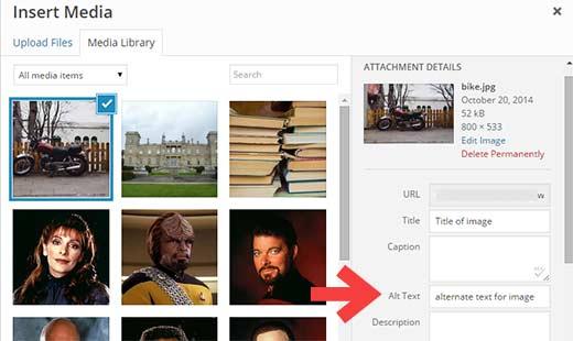 Gambar contoh untuk menambahkan Alt Text di WordPress.