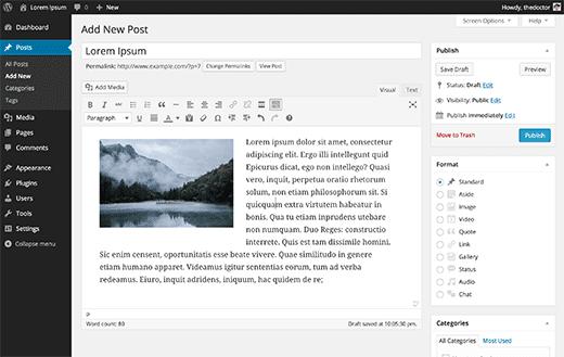 Editing a post in WordPress visual editor