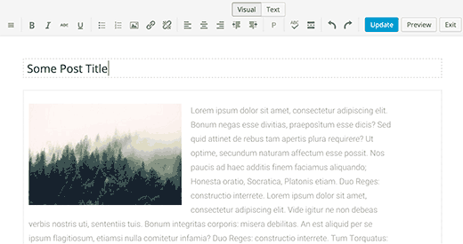 Preview of Just Writing's distraction free writing mode
