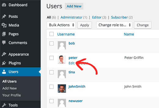 Editing user profiles by an Administrator in WordPress