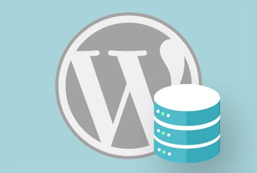 Llamadas a bases de datos de WordPress