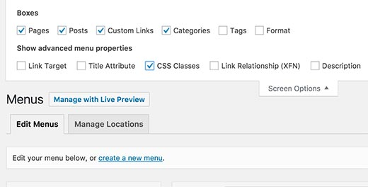 Enable CSS classes option in WordPress menus screen
