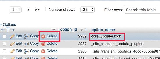Delete core updater lock option