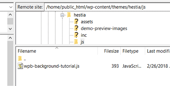Upload your javascript file