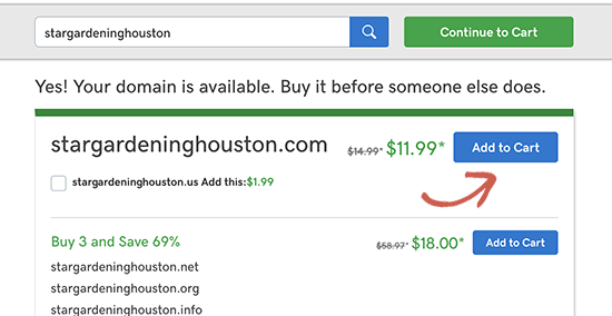 Add domain name to the cart