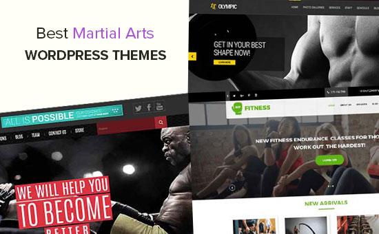 Best Martial Arts WordPress Themes