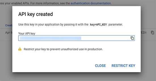 Copy browser api key